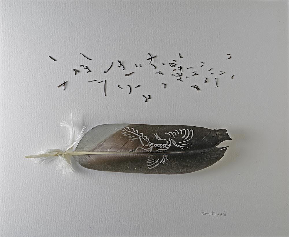 Волшебные перья Chris Maynard