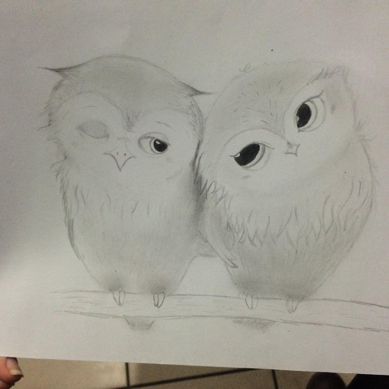 Нарисовать совенка карандашом