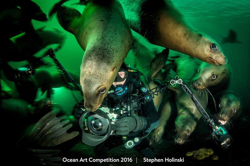 2016 Ocean Art Underwater Photo Contest