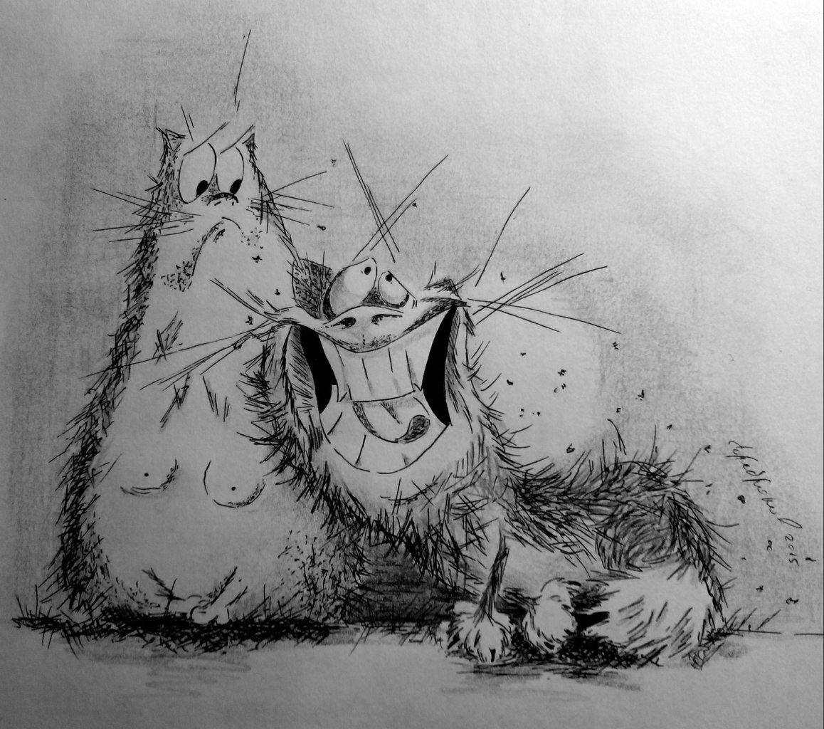 карикатуры смешные картинки тайских котиков получаются более